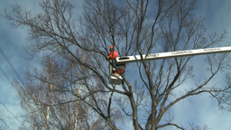 HD2009-1-9-23 arborist chainsaw bucket lift cut Stock Video Footage