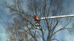 HD2009-1-9-23 arborist chainsaw bucket lift cut Footage