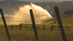 HD2009-7-2-5 irrigation in farm field evening, barb wire Stock Video Footage