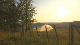 HD2009-7-2-7 irrigation in farm field evening, barb wire Stock Video Footage