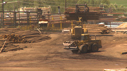 HD2009-7-2-13 log mill Stock Video Footage