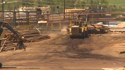 HD2009-7-2-13 log mill Stock Video Footage