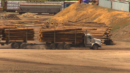 HD2009-7-2-15 log truck Z to log pile Stock Video Footage