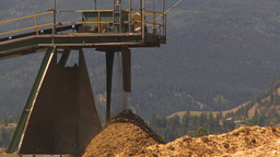 HD2009-7-2-19 log mill conveyor montage Stock Video Footage