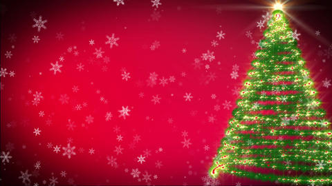 Christmas tree growing at snowfall night Animation