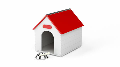 Doghouse stock footage