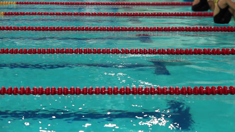 Swimming competition start and finish Stock Video Footage