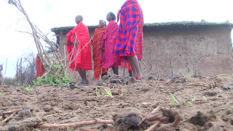 Men Masai dancing the national dance. Kenya Footage