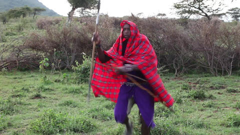 Maasai warrior with a spear hunting Footage