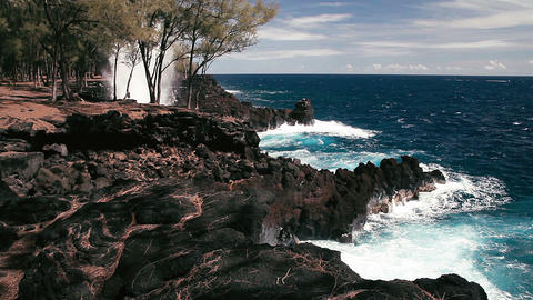 1080p, Beach At MacKenzie State Park, Hawaii stock footage