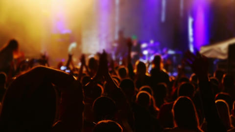 Hands and Heads of Spectators at a Concert Footage