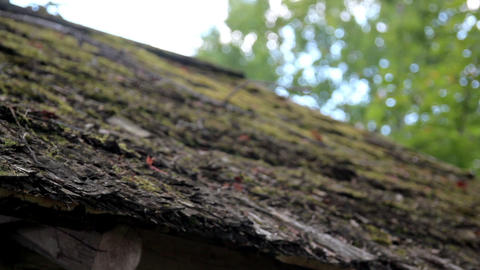 Wooded Roof of the hut that is organic is covered  Footage