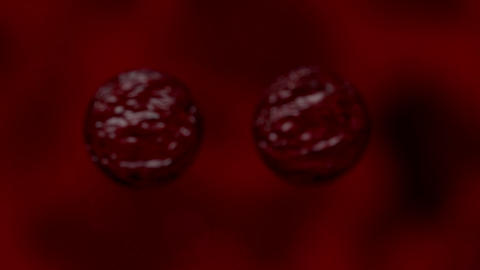 Cells multiplying bacteria virus blood under micro Animation
