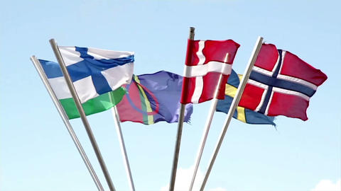 Different European Flags Swaying In The Air stock footage