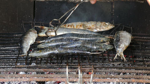 Fish Sardines Grilling on Grid Live Action