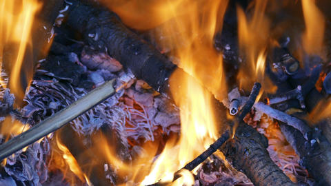 Firewood Burning in the Fireplace Footage
