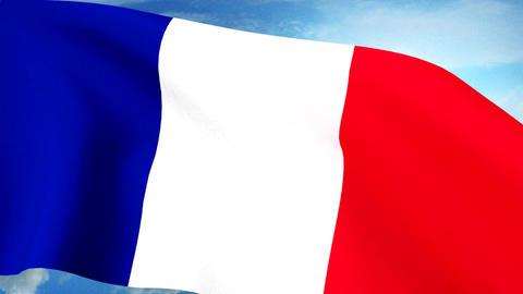 French Flag Closeup Waving Against Blue Sky Seamle Animation