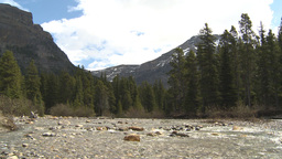 HD2009-6-9-24 Mountain stream Stock Video Footage