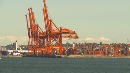 HD2009-6-34-8 sea conatinor cranes Stock Video Footage
