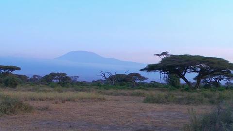 Kilimanjaro,africa Footage