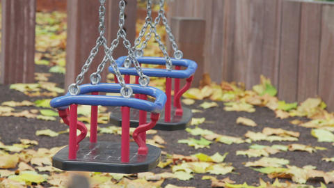 Toddler Swing Live Action