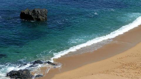 Waves Crashing on Rocks and Beach Footage