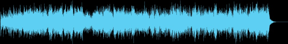 Bats in the Belfry Music