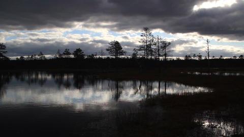 Sundown view of the bog swamp marsh land Footage