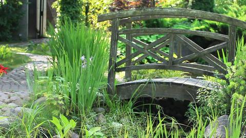Garden Landscape with bridge Footage