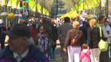 HD2009-5-7-3 Busy People Mall stock footage