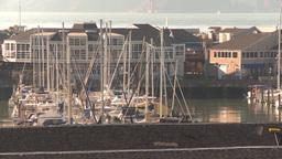 HD2009-11-2-7 sailboat marina Stock Video Footage