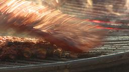 HD2009-11-2-21 BBQ ribs Stock Video Footage