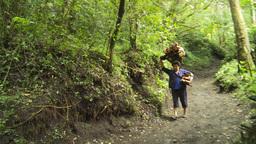 HD2009-11-8-22 guatemala hike trail woman firewood Footage