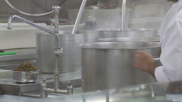 HD2009-11-9-4 stainless steel kitchen #2 Footage