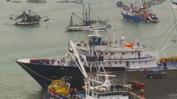 HD2009-11-12-15 tuna fleet at dock Stock Video Footage