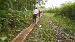 HD2009-11-12-23 people walking through jungle Stock Video Footage