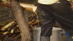 HD2009-11-12-31 sugar cane press Stock Video Footage