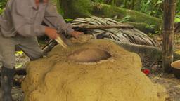 HD2009-11-12-33 stoking sugar cane still fire Stock Video Footage