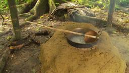 HD2009-11-12-37 sugar cane still steaming Stock Video Footage