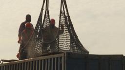 HD2009-11-13-35 unloading tuna Stock Video Footage