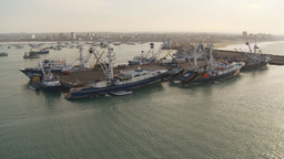 HD2009-11-14-1 tuna boats in dock Stock Video Footage
