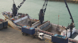HD2009-11-14-3 unloading tuna from bots Stock Video Footage