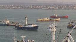 HD2009-11-14-9 tuna boats in harbor Stock Video Footage