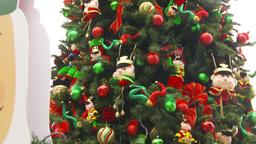 HD2009-11-15-16 Xmastree Stock Video Footage