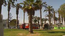 HD2009-11-18-54 Arica traffic palms Footage