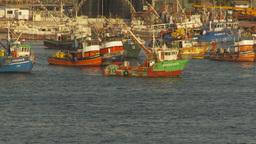 HD2009-11-19-2 tubboat passes fishingfleet Stock Video Footage