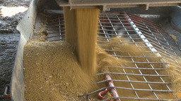 HD2009-10-6-36 grain truck mustard seed into auger Stock Video Footage
