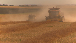 HD2009-9-32-9 grain harvest combines Footage