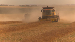 HD2009-9-32-9 grain harvest combines Stock Video Footage