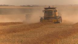 HD2009-9-32-9 grain harvest combines Stock Video Footage
